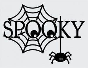 spooky-spider-in-arizona