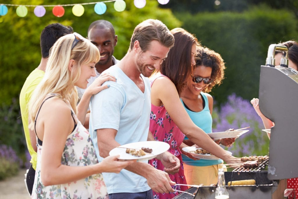 Protect your BBQ from Mosquitoes