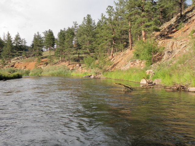 South Platte River Near Happy Meadows Campground