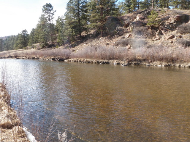 South Platte in Catch and Release Area