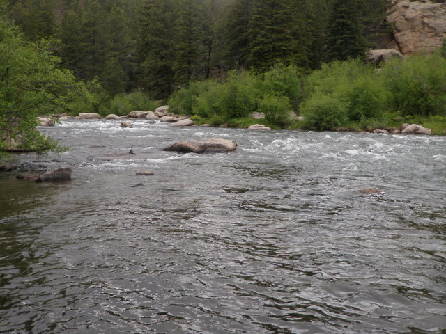 South Platte River in Eleven Mile Canyon