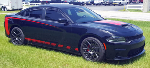 Dodge Charger Striping