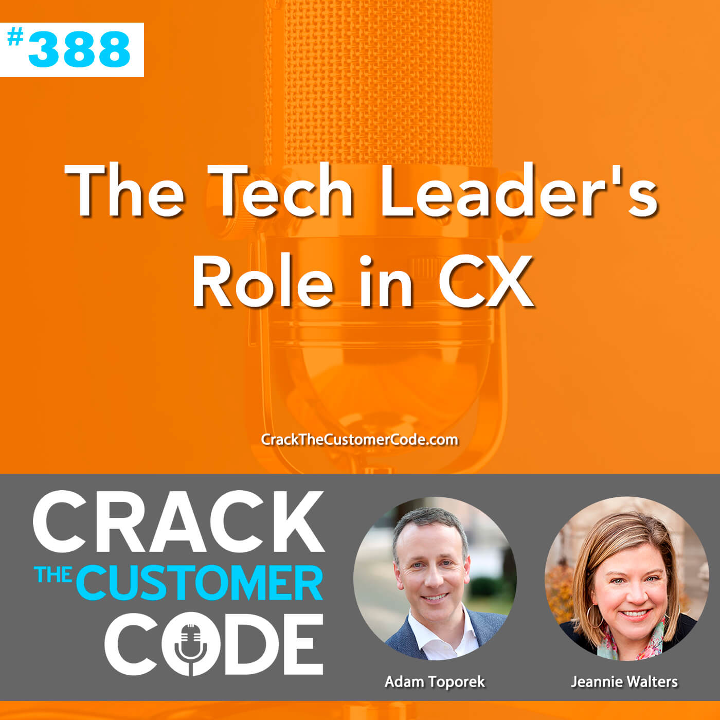 388: The Tech Leader's Role in CX