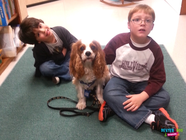 Dexter the reading therapy dog