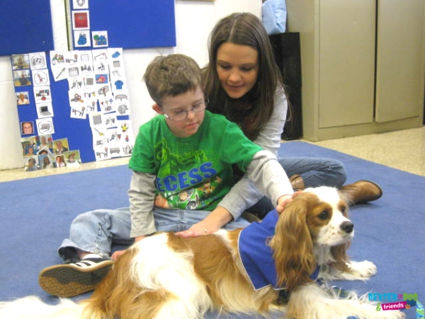 Dexter the Dog providing therapy dog visits