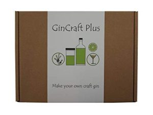 craft gin set