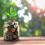 a plant sprouts from a jar of coins