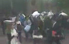Locust Walk Pillow Fight: What the Hell?