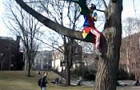 Squawk!: This Must Be A Fraternity Pledge Task…One That You'll Want To See