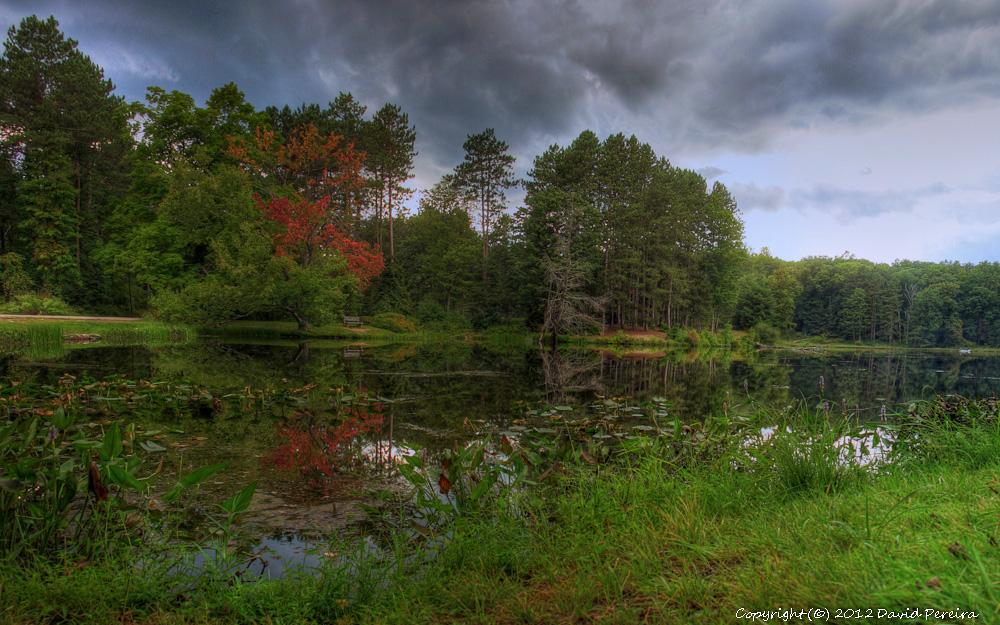 nature-23.jpg