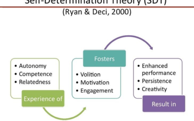 Skylab Adaptation of Self-Determination Theory and Physical Fitness