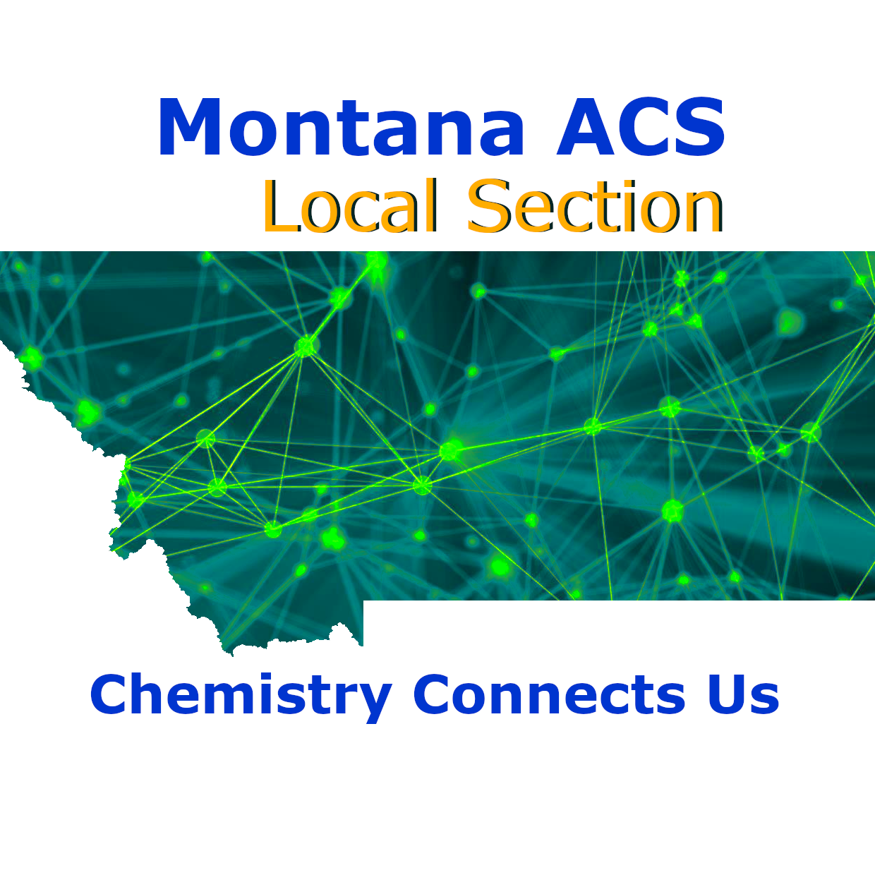 Montana ACS Local Section