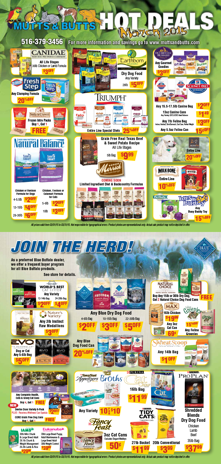 March 2015 Flyer