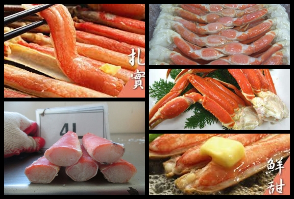 Cooked Snow Crab Half-Cut Image