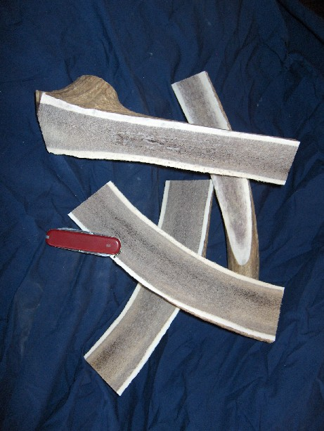 Elk Antler Medium Split by lb