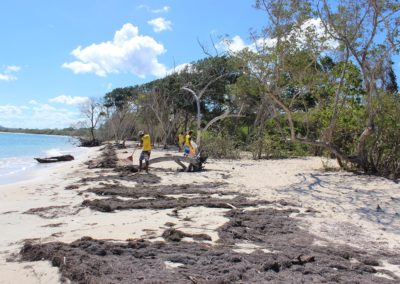 blog-punta-rucia-beach-cleaning_25
