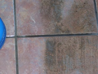 grout cleaning service greenville al