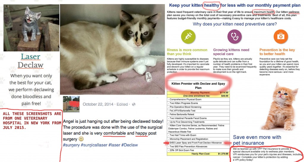 Those who supported the NY bill to ban declawing and those