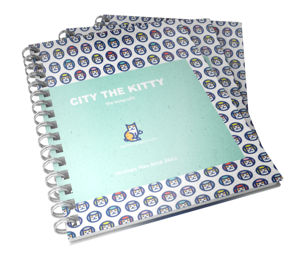 City the Kitty Strategic Plan