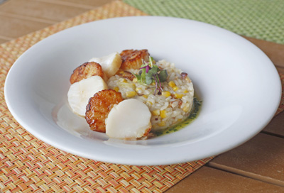 Sea scallops and N.Y. strips – with a side of moderation