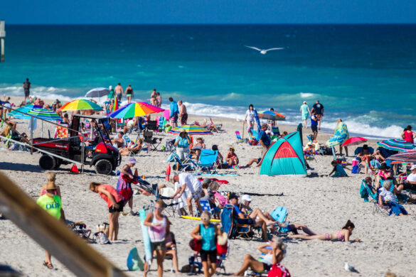 New November attendance record set at city beaches
