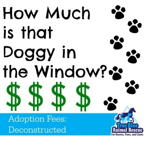True-Blue-Animal-Rescue-Adoption-Fees-Deconstructed