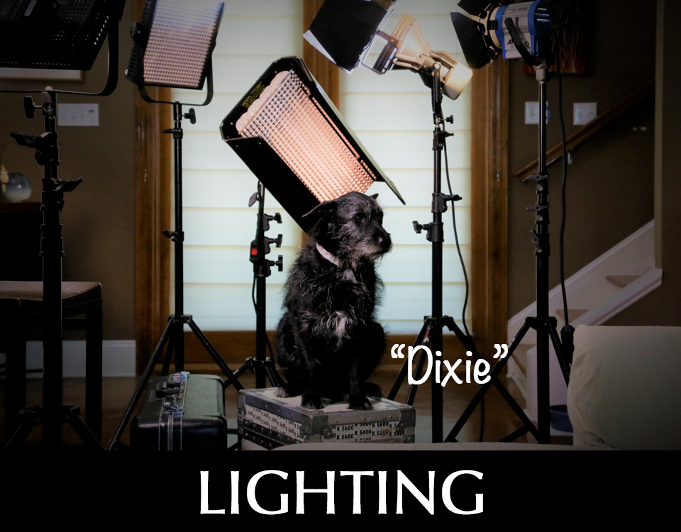 Lighting equipment with dog named Dixie