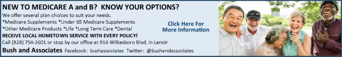 Bush & Associates Web Banner Ad 02