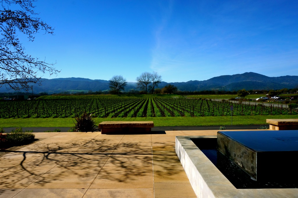 Napa Valley Tara Moss Travel Ladyhattan Blog NYC