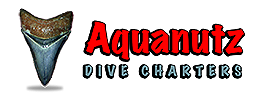 Aquanutz Shark Tooth Diving -