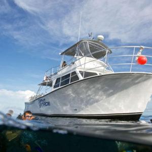 Key Dives Charter