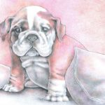 Pink Puppy Drawing