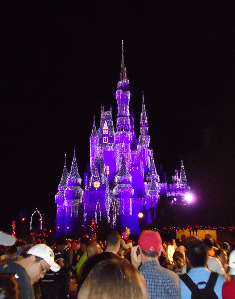 Cinderella's Castle lit for Christmas