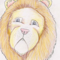 Drawing - Lion