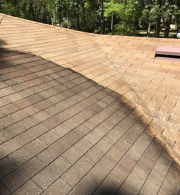 gainesville roof washing