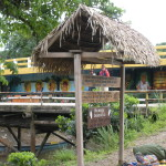 A walk on the Amazon River (Day 1 of 5) | Budget  Adventure Travel
