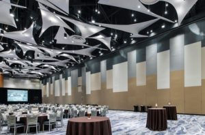 Conference Center Acoustic Wall Repair San Antonio Convention Center Room Divider Wall Maintenance Austin Hotel wall service San Marcos