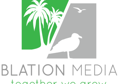Baltion Media