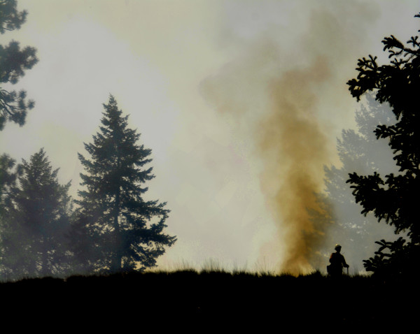 Rising Firefighting Costs Raises Alarms for Forest Service