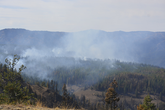 ODF Committee to Address Oregon's Increasing Wildfire Activity