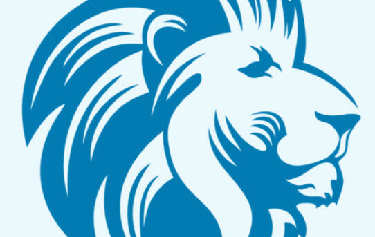 Introduction to Blue Lion Ministries