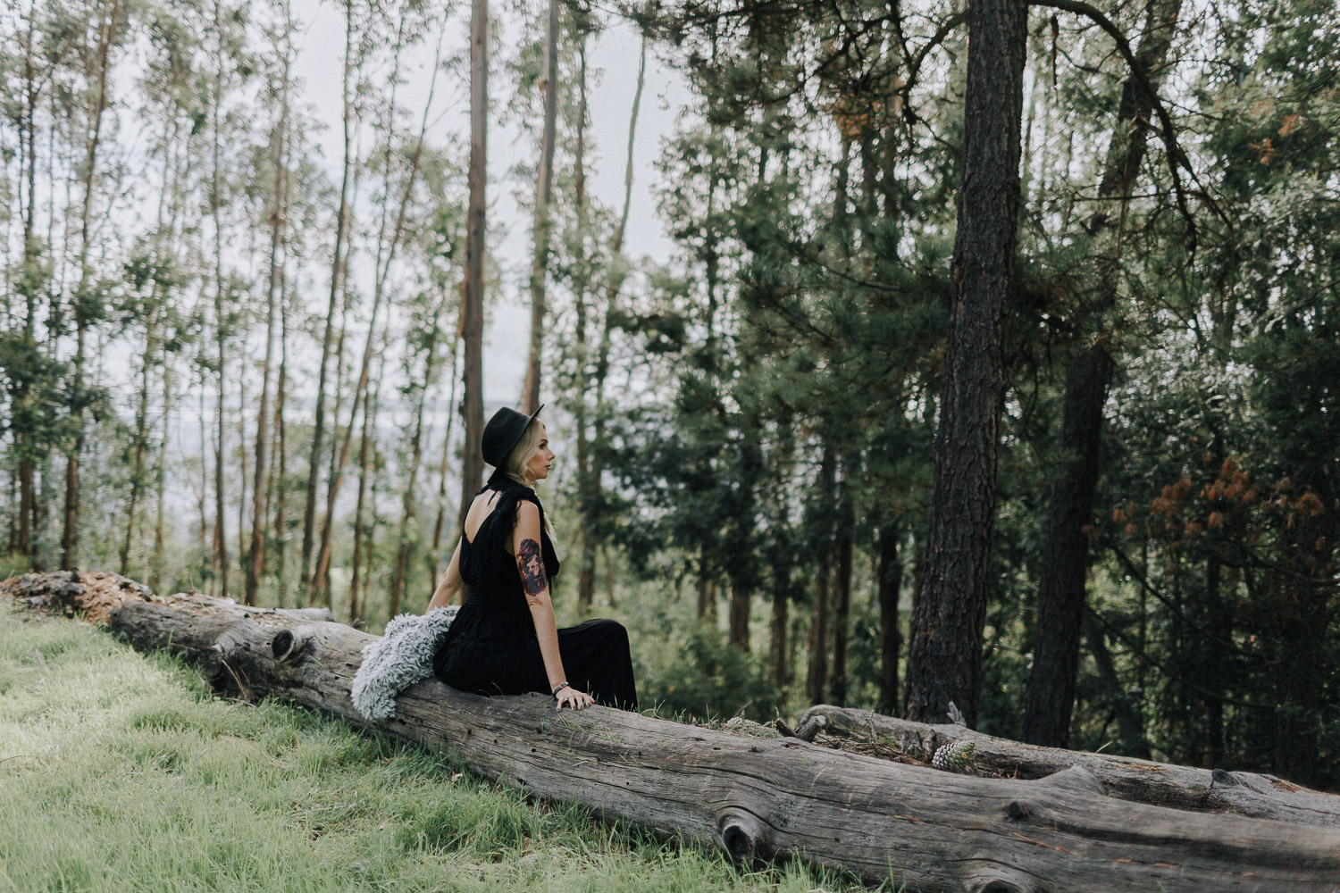 Image of a girl sitting on the dead tree