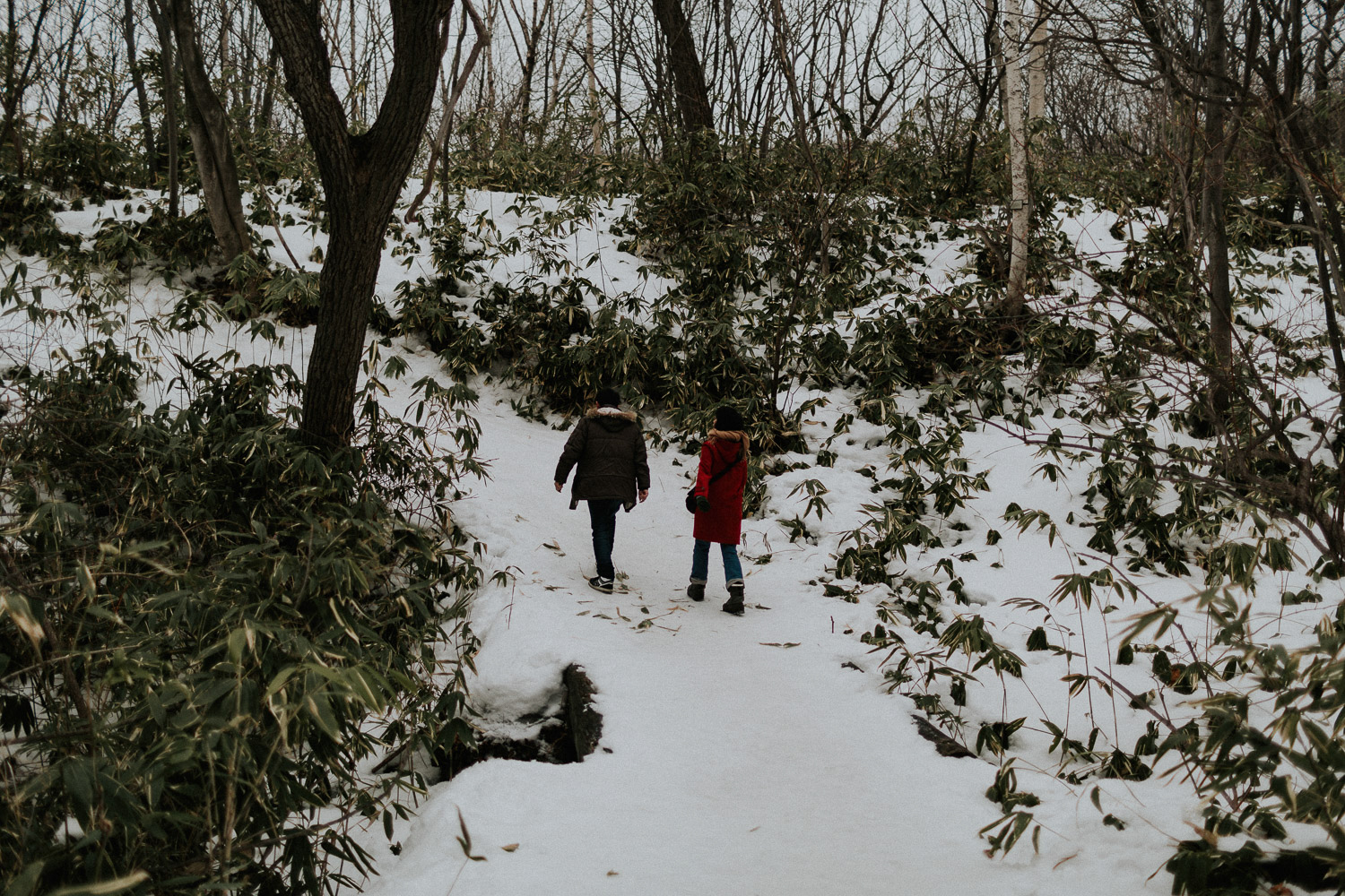 Image of two people walking on snow
