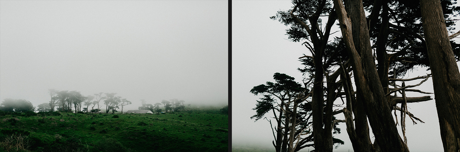 Image of top of mountain and trees