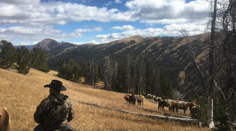 Hunters and pack horses in Wyoming