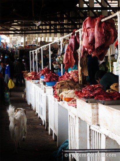 A dog stalks the meat aisle in Cusco's Central Market, Peru photo