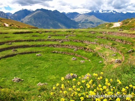 A more decayed terraced area, Moray, Peru photo