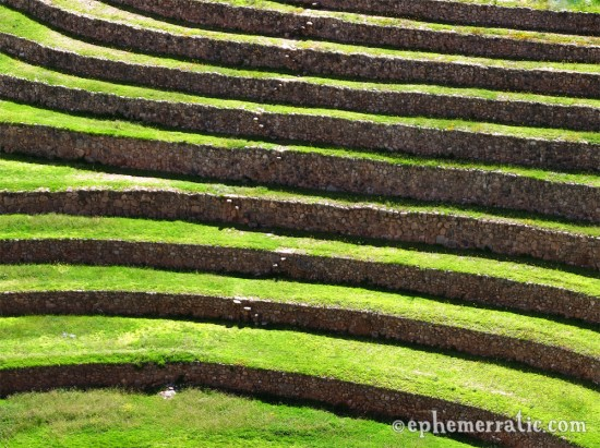 Gently curving terraces, Moray, Peru photo