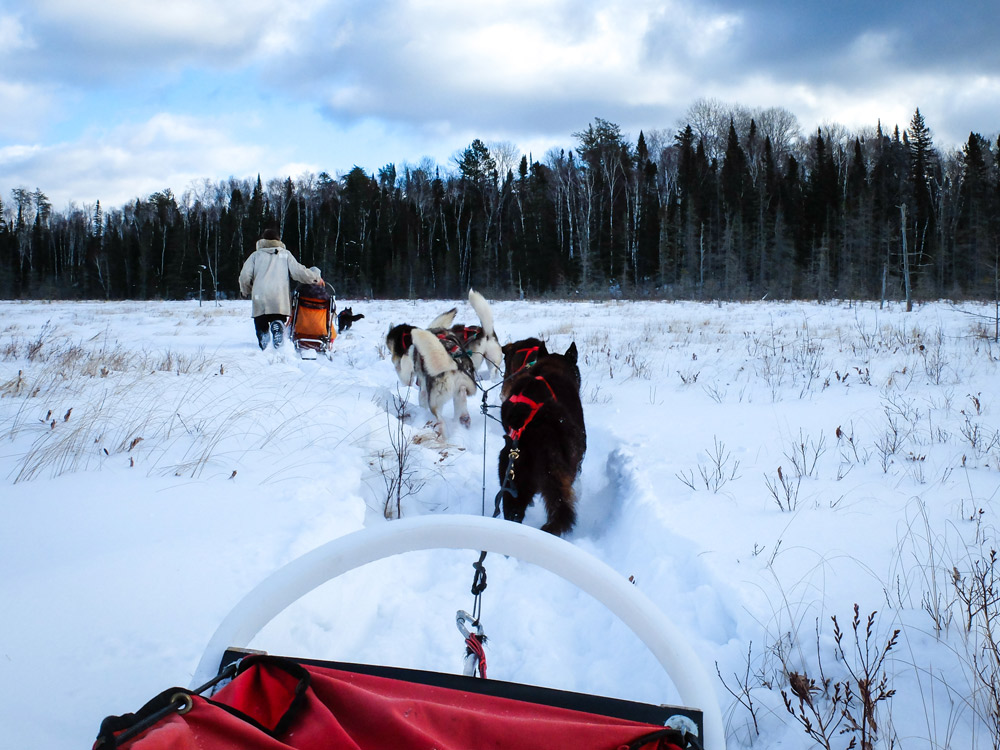 Making our way through the frozen marsh.