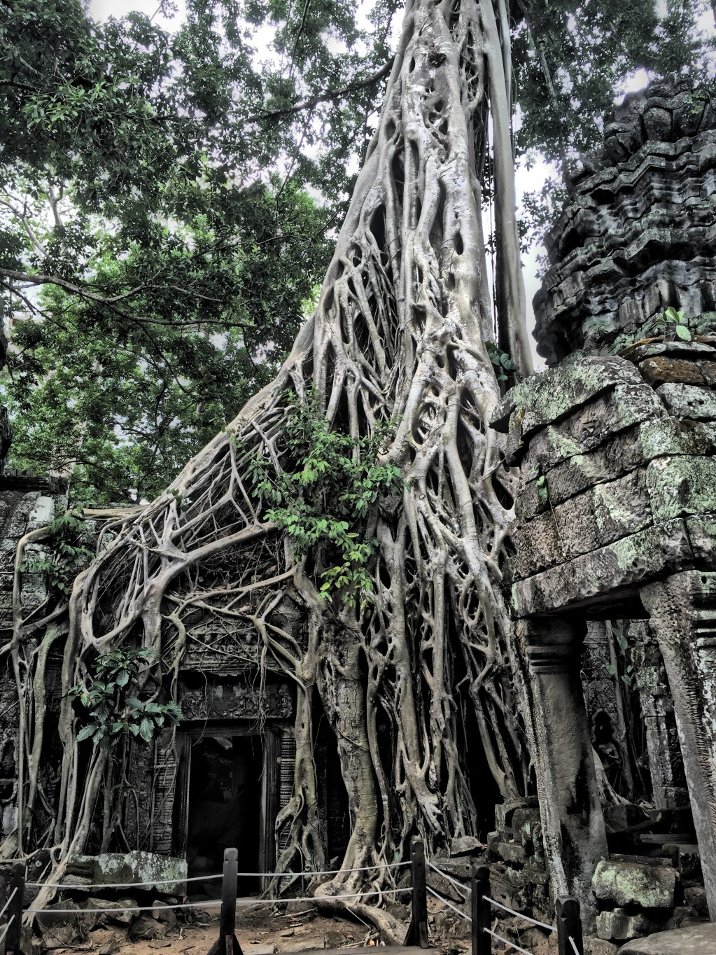IMG 1994 e1442629000401 - 20 Photos That Prove Angkor is the Best Destination in the World